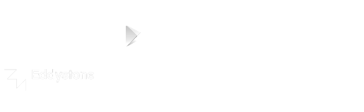 Bleesk Logo